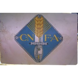 TESSERA DELLA CONFEDERAZIONE NAZIONALE FASCISTA DEGLI AGRICOLTORI, BELLUNO, 1928