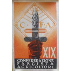 TESSERA DELLA CONFEDERAZIONE NAZIONALE FASCISTA DEGLI AGRICOLTORI, ALESSANDRIA, ANNO XIX