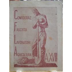 TESSERA DELLA CONFEDERAZIONE NAZIONALE FASCISTA DEGLI AGRICOLTORI, ALESSANDRIA, 1940