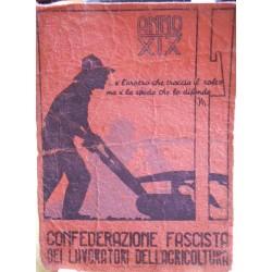 TESSERA DELLA CONFEDERAZIONE NAZIONALE FASCISTA DEGLI AGRICOLTORI, NOVA SIRI, XIX